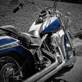 Classic Beauty in Blue by Brad Lehigh - Transportation Motorcycles