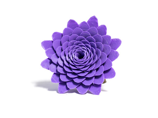 Camilla Flower