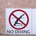 no diving LOL in Miami, Florida, United States
