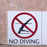 no diving LOL in Miami, Florida, United States