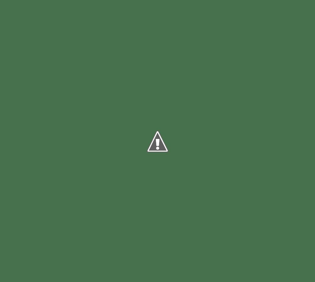 Maxillaria tenuifolia - Page 3 FW4vlF9_Pb0LAqvkDDZ4BYOj9kKTe1iNLHeigN6zXOV_prjB_U-yDni5AiSulmk7zdP4oBjl-jSXlQOrPFWQuhuT1klyOni0LzQEzmn4UKKht0OLS6OMcDmKQ0CNAkEEKGUuVI9_4jhNnn03tfHmvFbymSlsKD6LRPygF_jivGtFs0ngyt1EE4m_zdxEYkyFTsrqvMJX6kk79sFDmSEmK-HCn1GaOswLdkPOr-juv9BIs4xAVyHG8QMdzpw2xZ9YQPoQLqqmvgOk9Q3zGOzQPia1cPDqC0FpEqIHC6oVVuDZh7NcRSJ9eWmYLtEJF1_0a7mgnv2j6PASCkhtQhOyMPUutTu1_kqYnk34RZFHbGLQkd2dj3NCzBsXhvV95kU9GkzHFKPz98Z8cKqFKP4hAa02vt-61FPpXos48jj0BM9RGxY7Md8xYUELCNrSdC6aWHCvEfTUWL6qFnIAK_IQXASdRqftBsWzn4b_t-Tv8bc2NeqCfluDKOfAC549QKy569V9O7bKUe-kzyNDN6Ay8UKzrZDsMI_nSX3P3XYfP_LF6hrbrERC72sYnlnIj_mPImNpu1XHYomEv_9nAvc3n-_qMhbdiJR3aJZRKUIL_U1yhHR2jTS39rE2S4o-ZkNlgupfZrc8zEy2fNZxzj4DWbg7eyyb-YA=w1065-h954-no