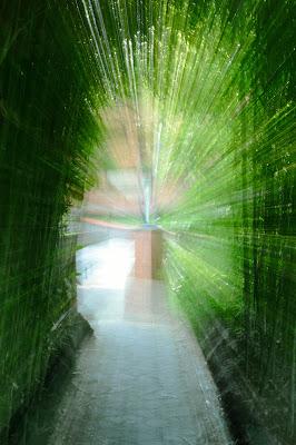 Scie di verde... di MoMMo87