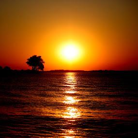 African Sunset by Sandra Mcgowan - Landscapes Sunsets & Sunrises ( africa, safari, chobe river, sunset, botswana,  )