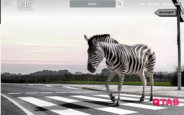 Zebras New Tab Zebras Wallpapers