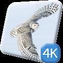 Flying Owl 4K Live Wallpaper icon