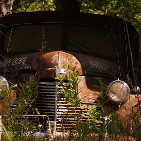 by Angelika Sauer - Transportation Automobiles
