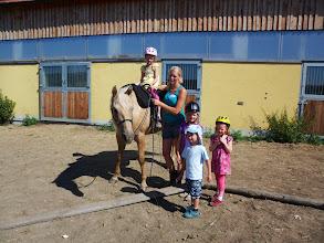 Photo: Spielerisches kennen lernen und reiten von Pferden am Dreierhof in Ma. Anzbach mit Verena Hieret - Foto: G. Puffer