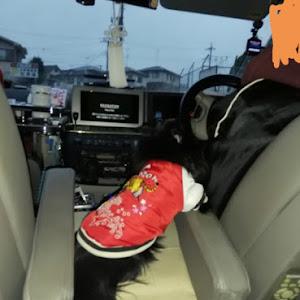 エルグランド E51 E 51のカスタム事例画像 ☆まったん☆さんの2019年12月30日17:23の投稿