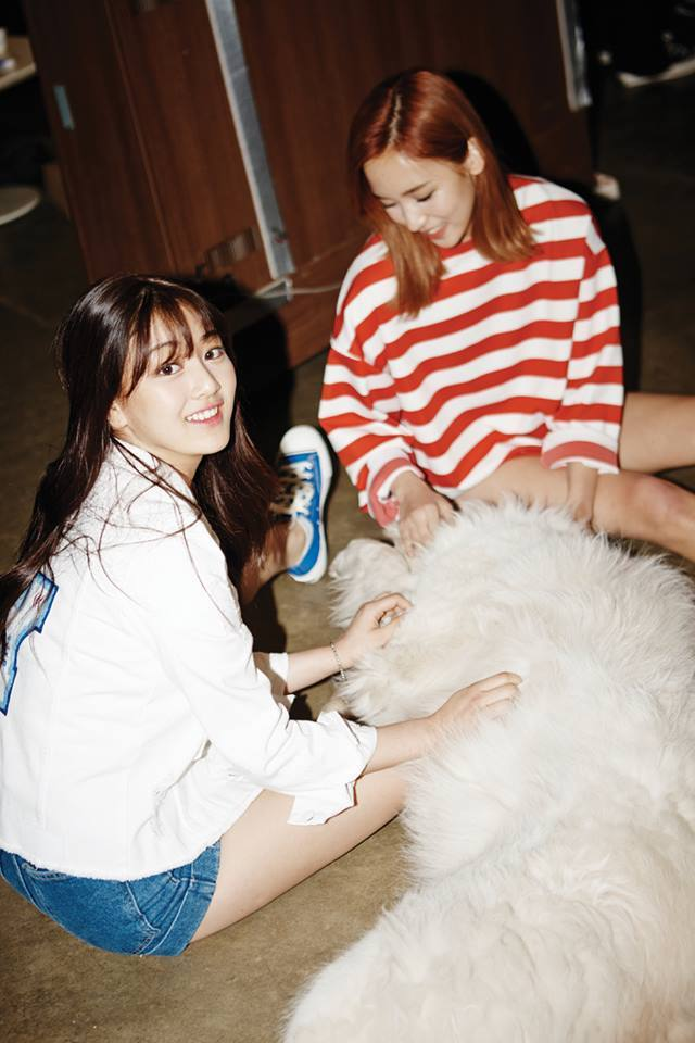 TWICE Has 10 Furry Little friends…This Is Who They Are