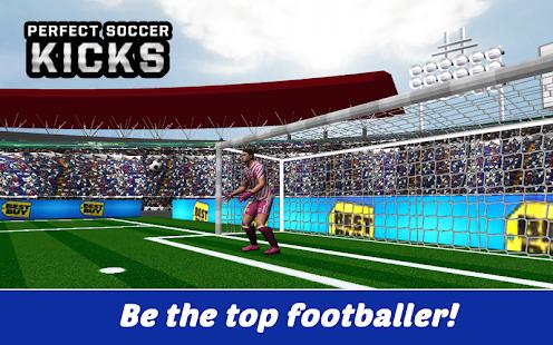 Perfect Soccer Kicks screenshot