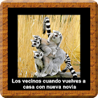 Imagenes Graciosas icon
