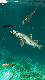 Rapala Fishing – Daily Catch 6