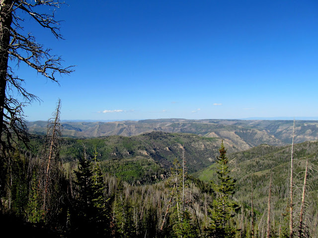 View over Huntington Canyon