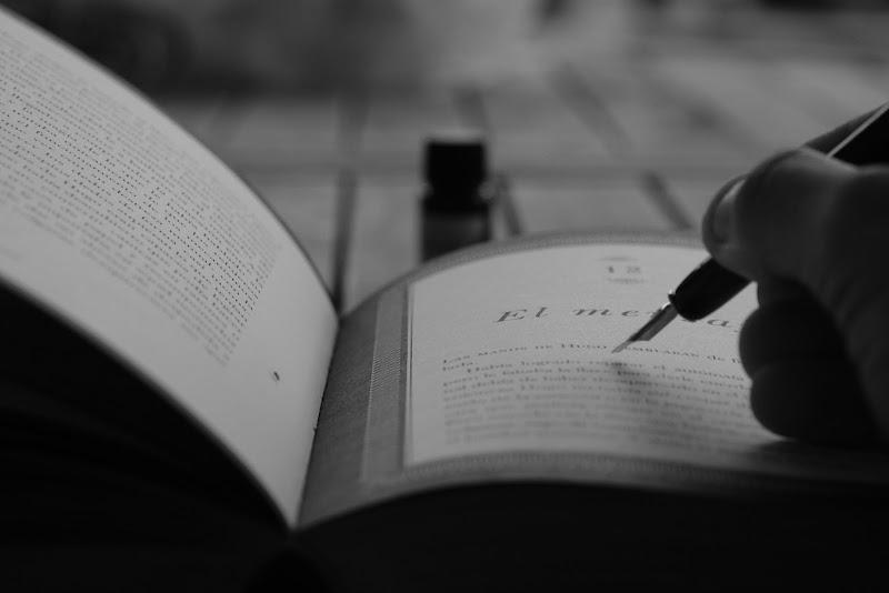 Lo scriba di alfonso_rotunno