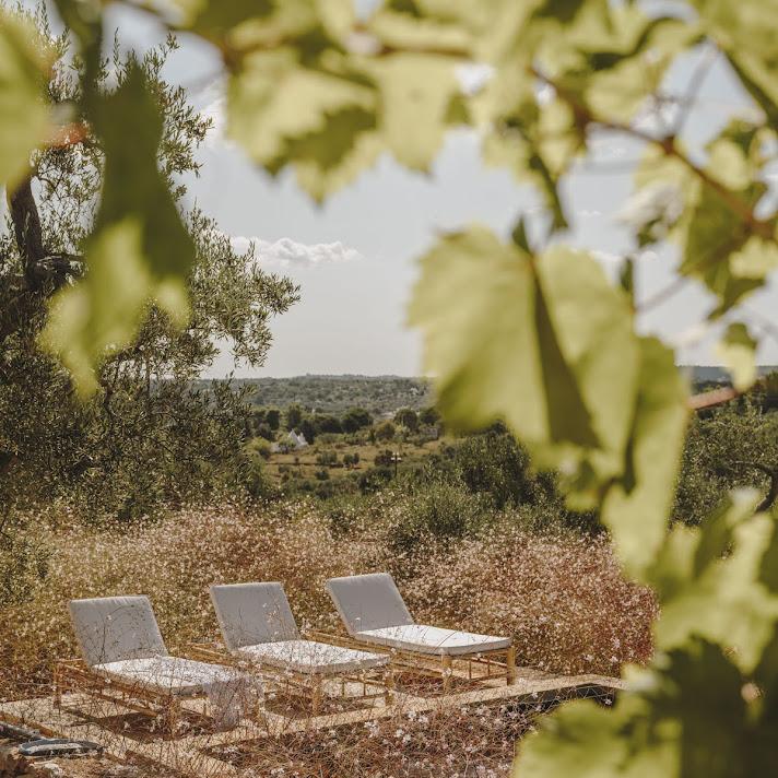 Casa_Olivetta_25