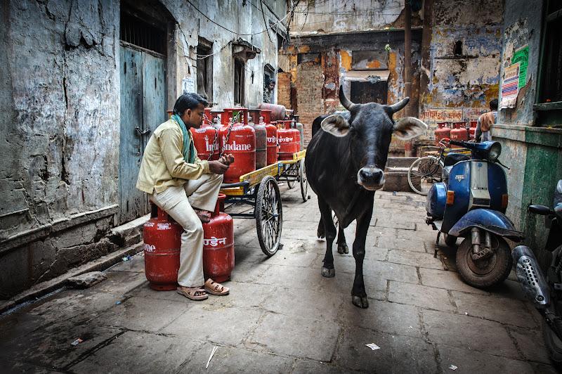 Per le strade di Varanasi... di ianna