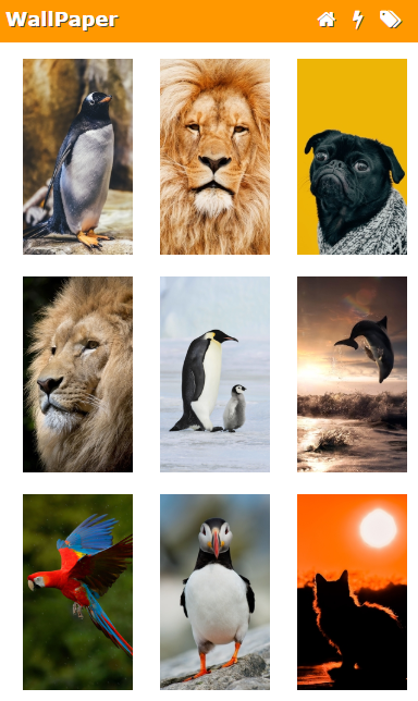 Скриншот WallPapers from Micromax