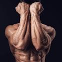 All Forearms Exercises icon
