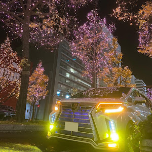 アルファード AGH30Wのカスタム事例画像 hiroさんの2020年12月20日08:43の投稿