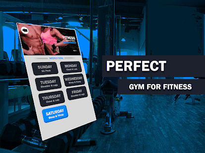 Personal Gym Exercises Daily Workouts Screenshot
