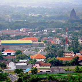 Beautiful Prambanan temple from distance ,, by Arnetta Rachma - Buildings & Architecture Statues & Monuments