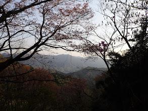 山頂の桜と景色