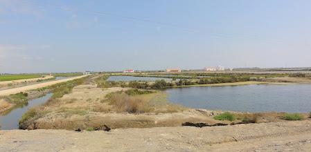 Photo: Old salt ponds, reclaimed as part of wildlife sanctuary