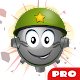 Minesweeper Professional (game)