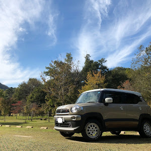 クロスビー  HYBLID MZ 4WD・2018'12のカスタム事例画像 (川E)さんの2019年11月07日20:10の投稿