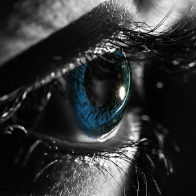 The Blue Eye by DrArindam Ghosh - People Body Parts ( eye macro, blue eye, contact lens, close up, lens, eyes )