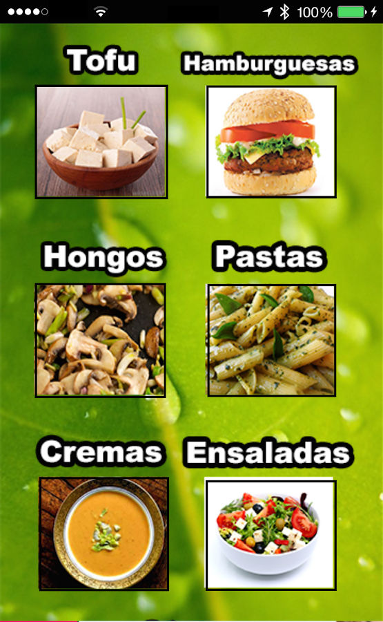 Recetas Vegetarianas- screenshot