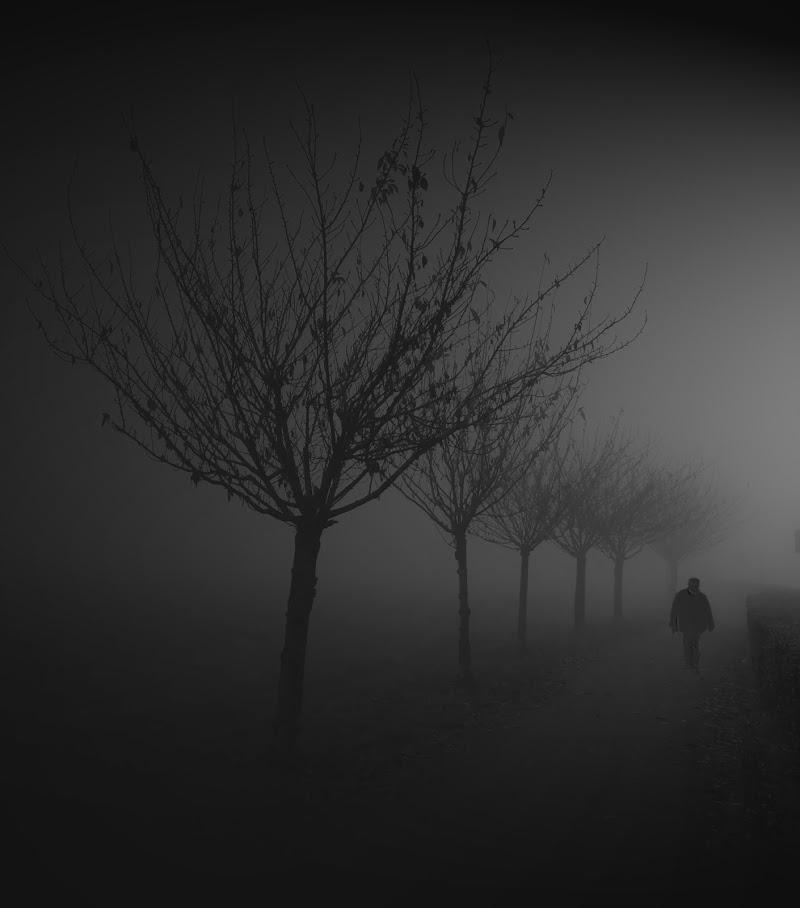 incontri oscuri nella nebbia di alfonso gagliardi