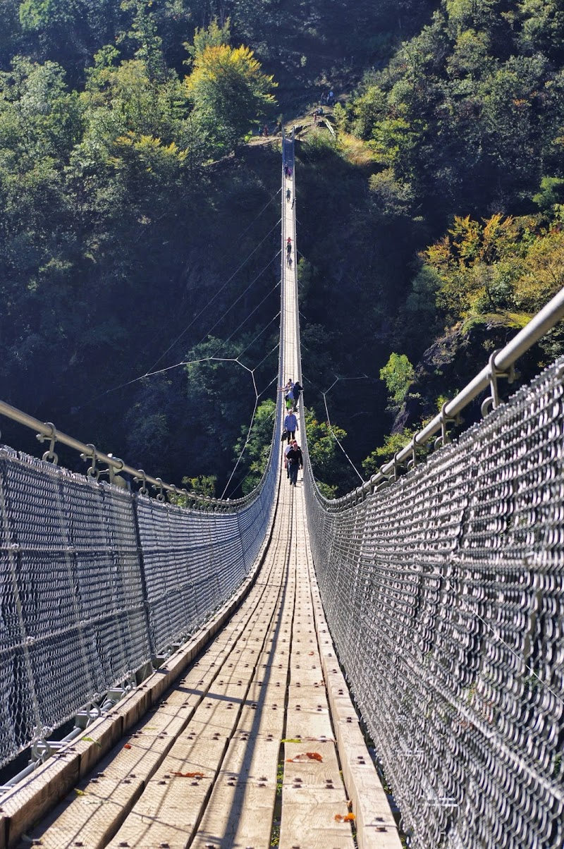 Ponte tibetano di DMax