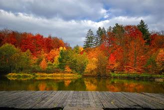 Photo: Bonjour à tous,  Une photo de saison qui trouve naturellement sa place dans l'album automne... L'album complet sur le blog : http://www.naturephotographie.com/category/portfolios/les-4-saisons/automne/
