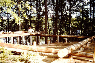 Photo: First logs in place.