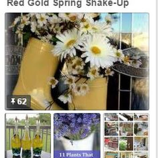 Red Gold Spring Shake Up Contest and Sassy Chicken Salad.
