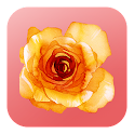 A flor de piel icon
