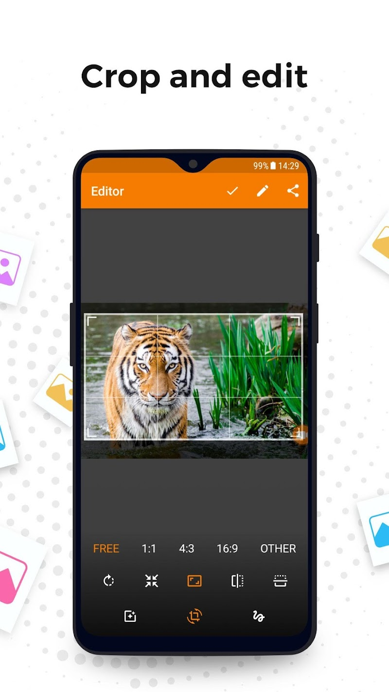 Simple Gallery Pro: Photo Manager & Editor Screenshot 2