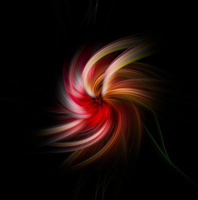 nel nero giochi di colori di elisabetta_de_carli