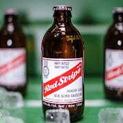 Bottled Red Stripe Beer