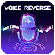 Voice Reverse Download for PC Windows 10/8/7