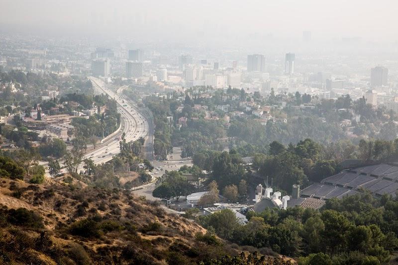 Cómo usa la ciudad de Los Ángeles la inteligencia artificial para plantar árboles y proteger a sus comunidades