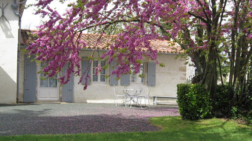 family-guest-room-for-5-at-the-french-bed-and-breakfast-le-clos-de-la-garenne-between-la-rochelle-rochefort-and-niort