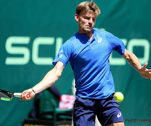 David Goffin fait un gros bond en avant au classement ATP