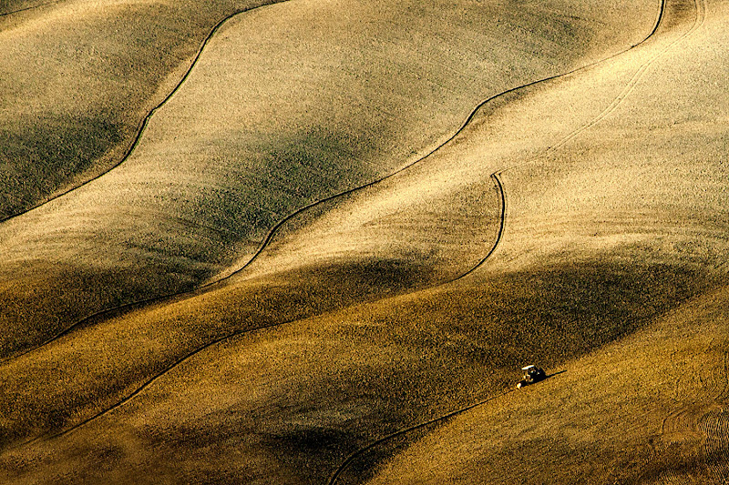 dune senesi  di faranfaluca