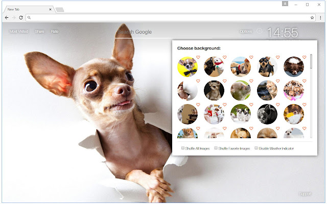 Chihuahua Dogs Custom New Tab - freeaddon.com