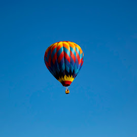 Alone by Vicki Switala Riley - Transportation Other ( blue sky, basket, balloon, yellow, black, red, single balloon, hot air balloon, multicolored, alone, blue, balloon festival, flying,  )