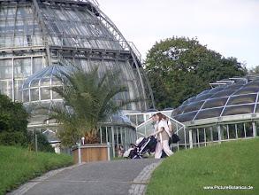 Photo: Botanischer Garten Dahlem