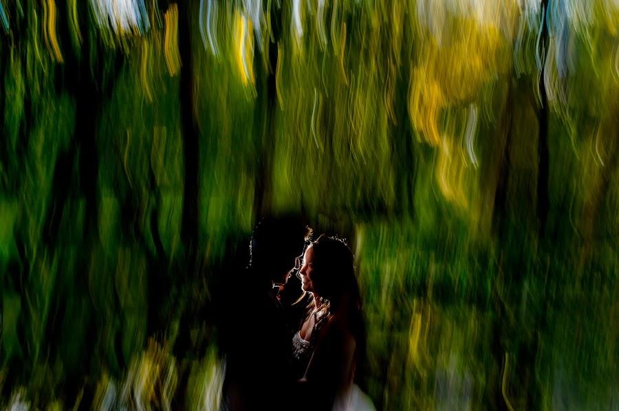 Wedding photographer Alberto Sagrado (sagrado). Photo of 14.12.2016