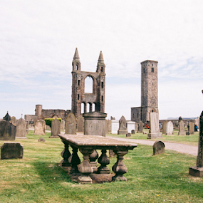 St. Andrews Cemetery by Adrian Popescu - Buildings & Architecture Decaying & Abandoned ( film, expired, 35 mm, cemetery, analog, analogic, travel, graveyard, sights, cathedral, analogue, ruins, historical, decay, abandoned )